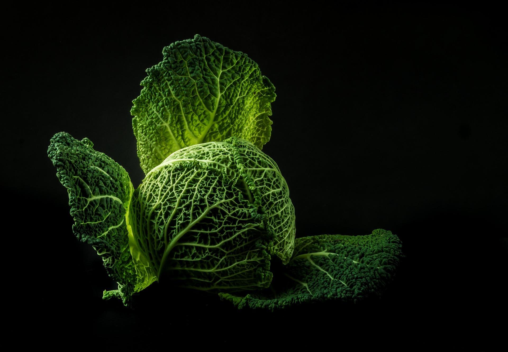 Fällt das Krebsrisiko bei Vegetariern geringer aus? auf ratgeber-blogger.de