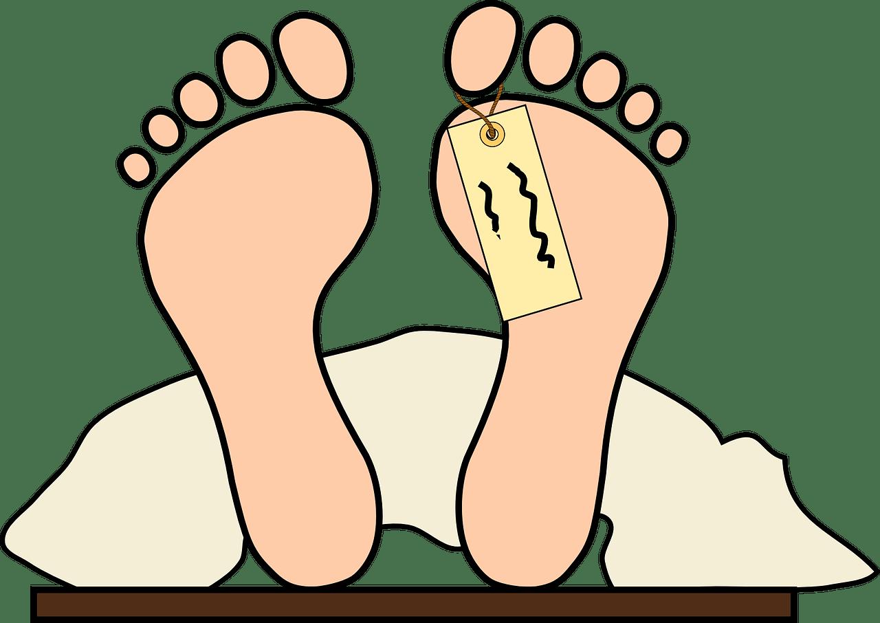 Seinen Körper nach dem Tod der Wissenschaft zur Verfügung stellen auf ratgeber-blogger.de
